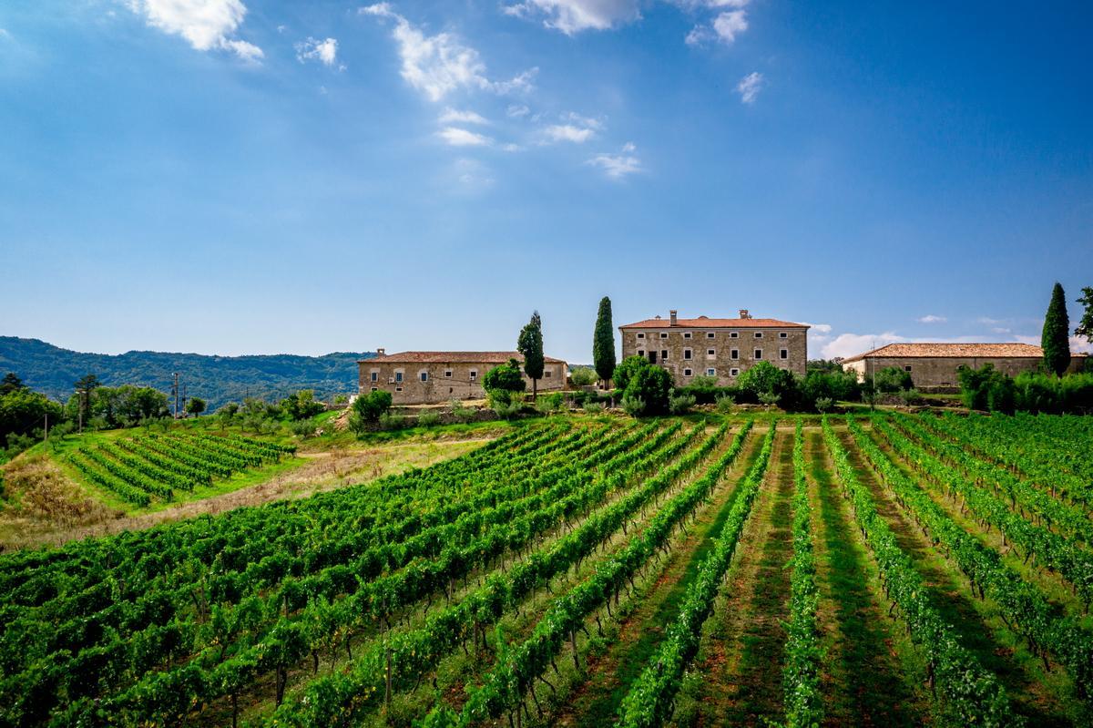 Weingut als Hochzeitslocation bei Hochzeit in Kroatien