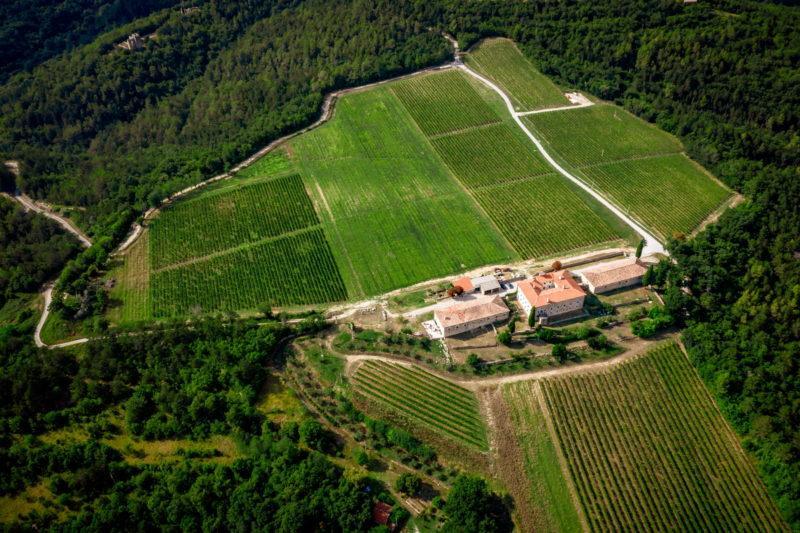 hochzeit kroatien hochzeitslocation weingut heiraten 02 800x533 - Romantisches Weingut