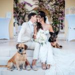 Hochzeit mit Hund Kroatien Wedding Hochzeitsplanung 4 150x150 - Hochzeit mit Hund in Kroatien