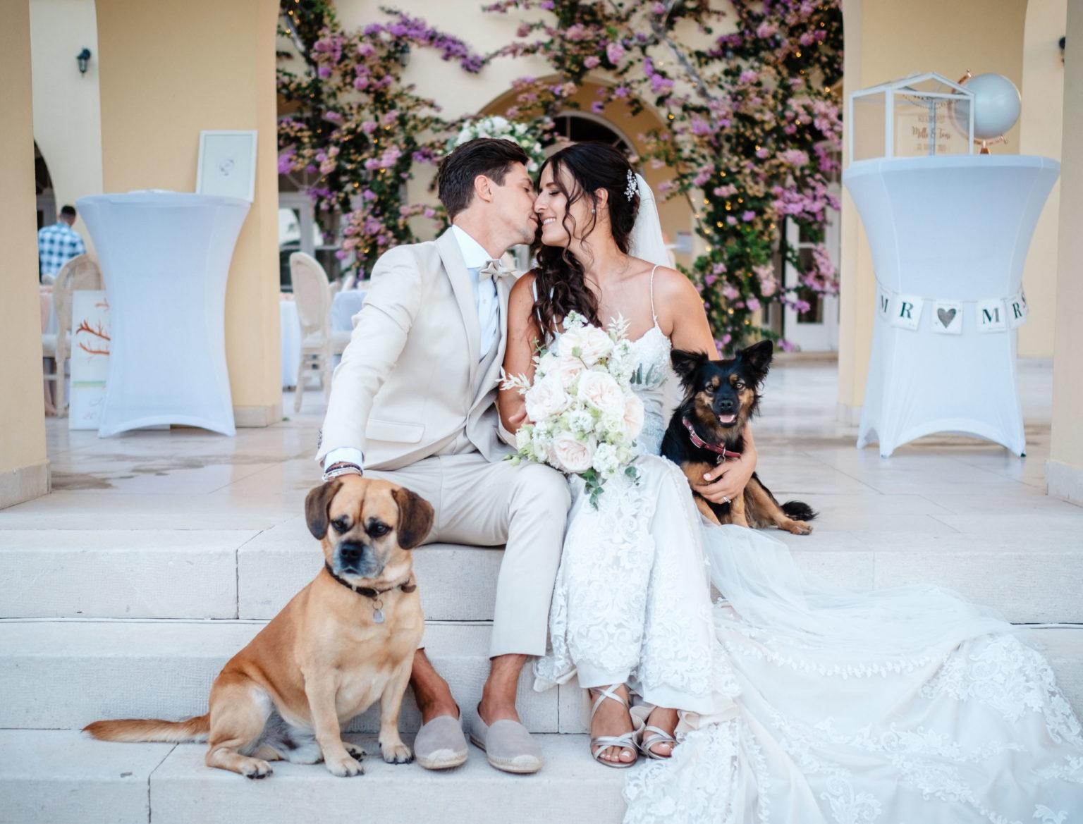 Hochzeit mit Hund Kroatien Wedding Hochzeitsplanung 4 scaled - Hochzeit mit Hund in Kroatien