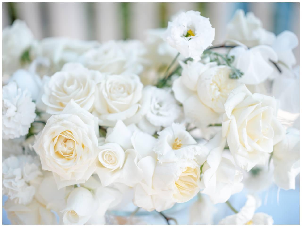 Hochzeit Kroatien Hochzeitsplanung Hochzeitsplaner Fotograf 18 - Luxuriöse Hochzeit in Weiß